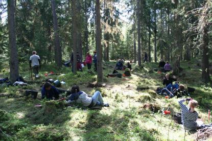 Energiska elever arbetar hårt för att kartlägga forntiden