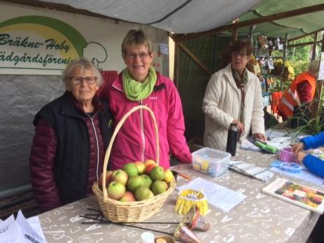 Ulla Persson, Gun Nying, Elisabeth Svensson och Margaretha Magnusson från Bräkne-Hoby Trädgårdsförening som var en av arrangörerna till årets Skörde- och Växtmarknad.