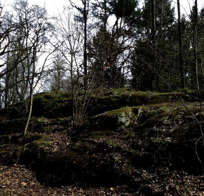 Man vet aldrig vad som gömmer sig i skogen i serien Jordskott. Kan du se vad som gömmer sig i skogen utanför skolan?