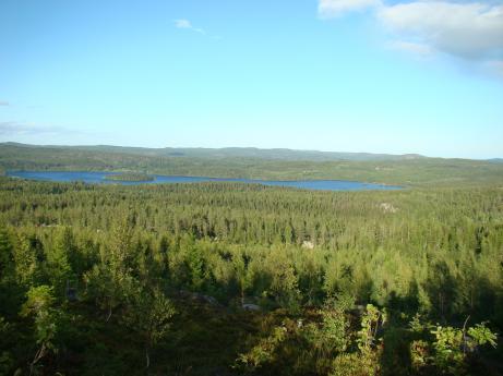 Från toppen av det naturreservat vi har ser man här Vamsjön och ut mot Skule/Docksta med havet bakom