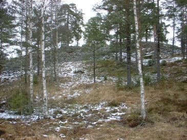 Salsta fornborg