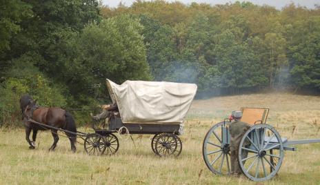 De deltagande hästarna fick utstå mycket oljud, men de klarade det bra!