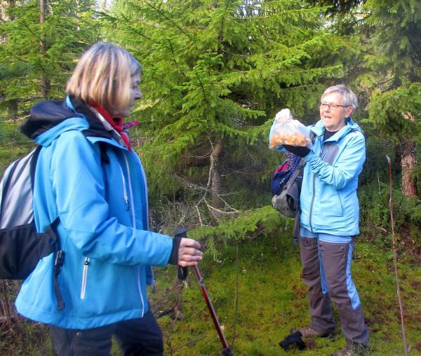 Karin hittade mycket svamp
