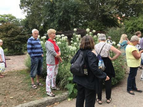 Det blev en hel del utflykter under Riksförbundets Svensk Trädgårds sommarmöte.
