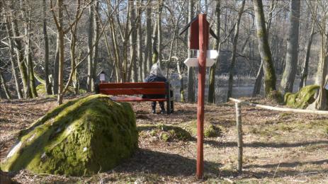 Längs med den vackra naturstigen i Ekfors har man satt upp flera bänkar där man kan sitta och vila, samtidigt som man kan njuta av Bräkneån.