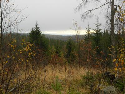 Utsikt från Vallahöjden 2012-10-07