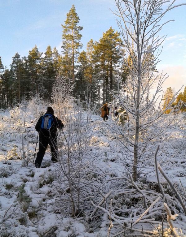 Snön lyste vit på berget,
