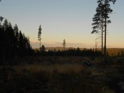 Fin utsikt över Ullångersfjärden.