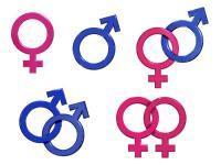 sex och samlevnadsundervisning kärleksfraser homo