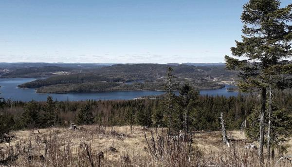 Utsikt från toppen av Ringkallen