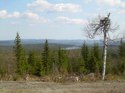 Här är vi uppe på den högsta delen av leden, Vallahöjden och utsikten är magnifik. Här är utsikten mot Bergsjön.