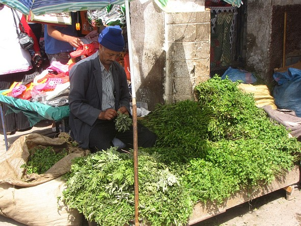 Essaouira - man selling mint
