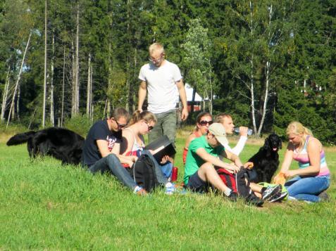 Många passade på att ha picknick i det gröna.