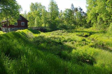 Orraryds kvarn i Nöbbeled är den översta kvarnen i Bräkneån. Dammvallen finns kvar men dammen är tömd och där passerar en smal åfåra. Foto: Inge Nilsson