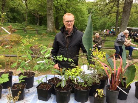 Kent Egners hade kommit från Karlskrona för att sälja sina egenodlade växter som kom från bland annat östafrika, Kina och Nya Zeeland. - Det här är en jättevariant av svärmors tunga och den kommer från östafrika, sa Kent.