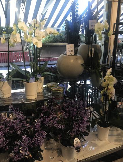Det finns många olika blommor i butiken.