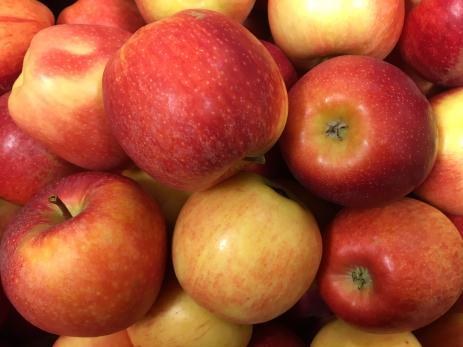 Många passade på att få sina äpplen artbestämda av äpplekännaren Matts Persson i Trensum.