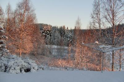 billigaste matkassen norrköping