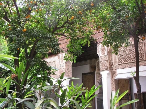 Bahia Palace - gardens with orange trees