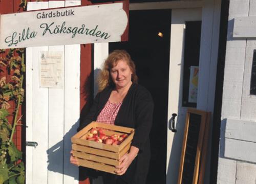 """Under Äppelmustdagen som Heike Tlatlik på """"Lilla Köksgården"""" arrangerar i mitten av oktober, kan man komma med sina äpplen och päron och få dem färskpressade eller pastöriserade från Mustkungens Musteri."""