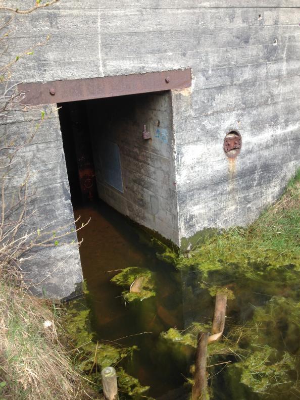 En bunker från hirthals bunkermuseum, lite översvämmad.