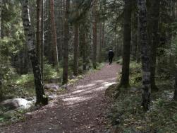 Vandrar från entré syd till Kälsviken.