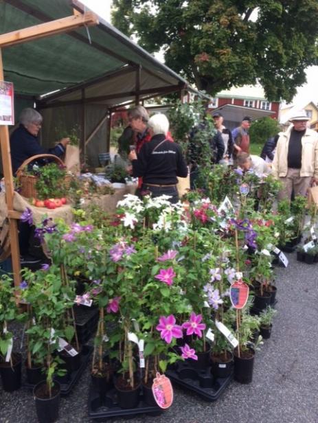 Många köpte växter med sig hem då det såldes många olika sorter på Skörde- och Växtmarknaden.