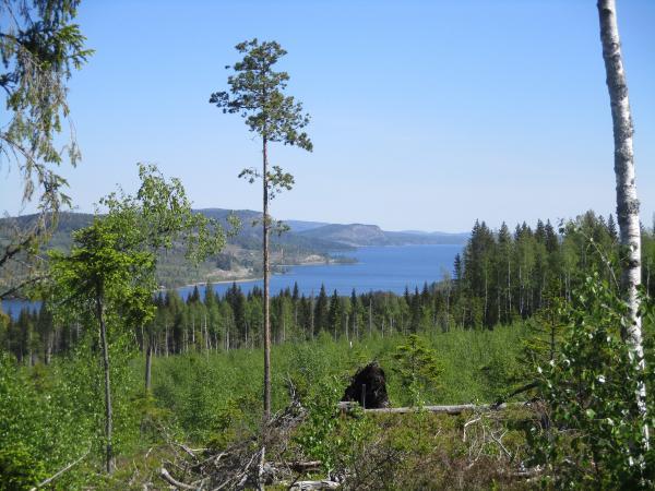 Utsikt över Ullångersfjärden