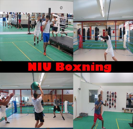På boxnings träningen