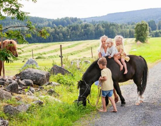 <span>En dröm för familjen var att ha hästar och i fjol blev den sann. Här rider barnen på hästen Chippen, en 15-årig welshponny.</span>