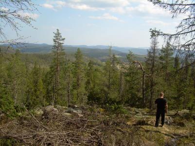 Efter Trollvattnet bär det ner mot Getberg.