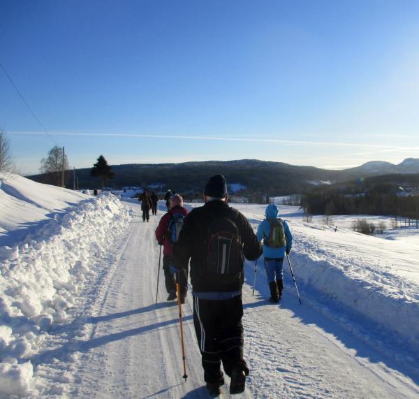 På väg tillbaka till Ullånger. Långt fram till höger ser man Dalsberget.