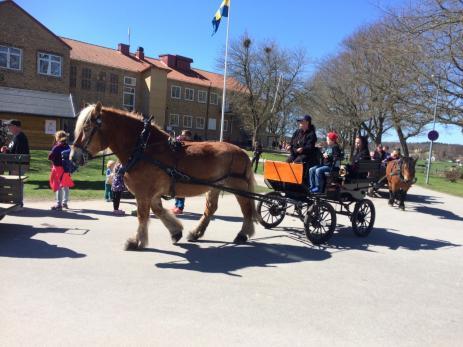 Det var många besökare som tog tillfället i akt att åka häst o vagn.