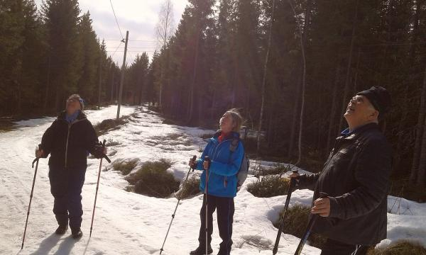 Spanar Anne-Marie, Eileen och Anders efter påskkärringar eller vårfåglar?