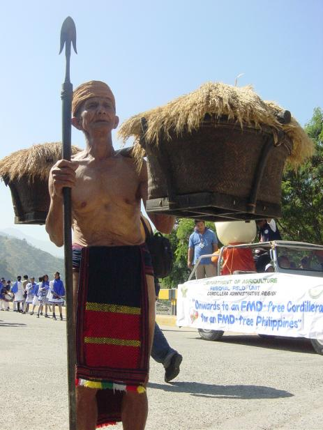 An old man carries bundles of rice and a spear to protect him along the way