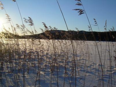 En vacker vinterdag vidStorÅkersjön .