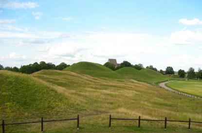 Undersökningsområdet vid kungshögarna i Gamla Uppsala ligger till höger på bilden