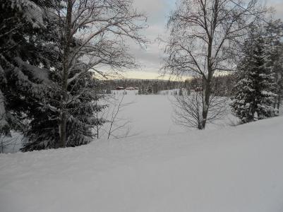 Möckelsjötjärnen vid juletid 2012.