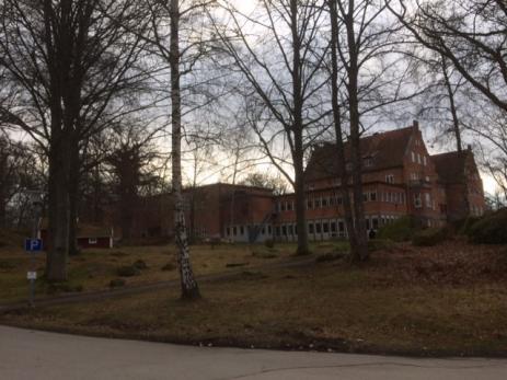 Det var Carl Pagels som bestämde att skolan skulle byggas på den plats där det växte unga vackra björkar och där arrendatorn Jöns Olsson brukade spela krocket och dricka kaffe under vackra sommarkvällar.