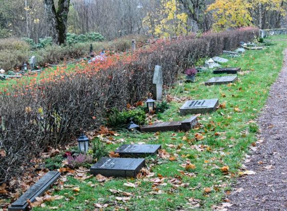 Drygt 500 gravstenar har nödgats läggas ned på kyrkogården i Bollebygd. <br />Av säkerhetsskäl.